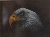 Eagle-Gary Morris